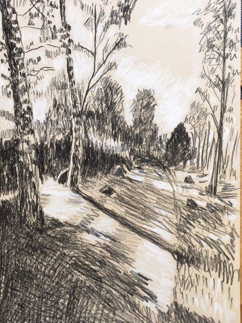 Skov i kridt og kul. Ann-Louise Bergström 2021