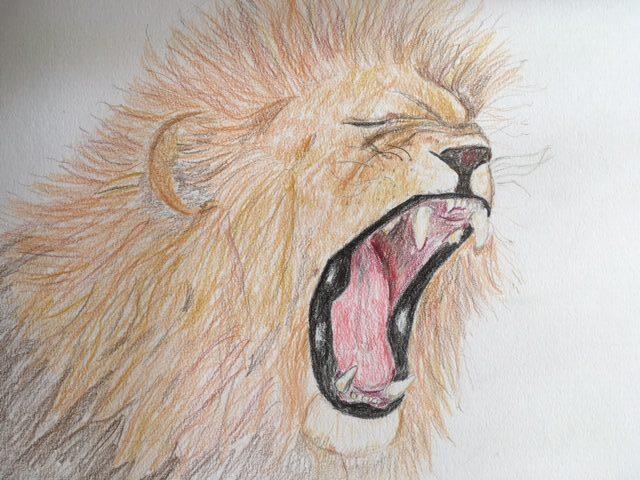 Kajsa løve 3